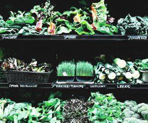 อาหารเพื่อสุขภาพดีอย่างไร