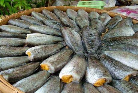 ปลาสลิด สุดยอดเนื้อปลาที่อร่อย และมีประโยชน์